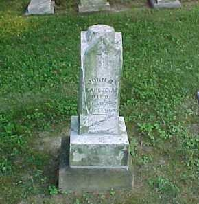 JEANGUENAT, JOHN B. - Scioto County, Ohio | JOHN B. JEANGUENAT - Ohio Gravestone Photos