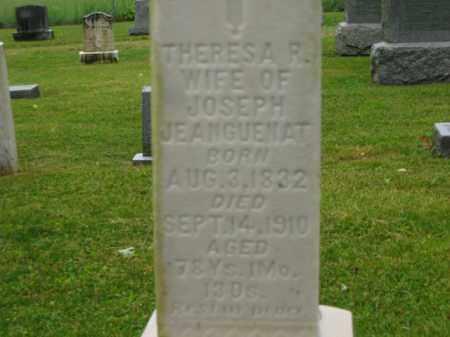 JEANGUENAT, THERESA R. - Scioto County, Ohio | THERESA R. JEANGUENAT - Ohio Gravestone Photos