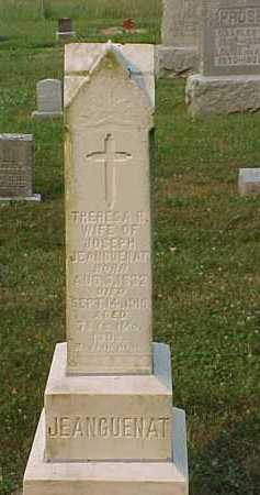 JEANGUENAT, THERESA R. - Scioto County, Ohio   THERESA R. JEANGUENAT - Ohio Gravestone Photos