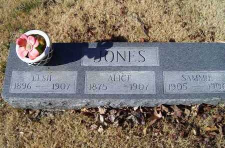 JONES, ALICE - Scioto County, Ohio | ALICE JONES - Ohio Gravestone Photos