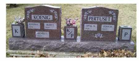 KOENIG, MICHELE L. - Scioto County, Ohio | MICHELE L. KOENIG - Ohio Gravestone Photos