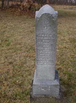 MCJUNKIN, LUVENIA C. - Scioto County, Ohio | LUVENIA C. MCJUNKIN - Ohio Gravestone Photos