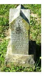 MUSTARD, MARION - Scioto County, Ohio | MARION MUSTARD - Ohio Gravestone Photos