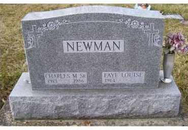 PRICE NEWMAN, FAYE LOUISE - Scioto County, Ohio | FAYE LOUISE PRICE NEWMAN - Ohio Gravestone Photos