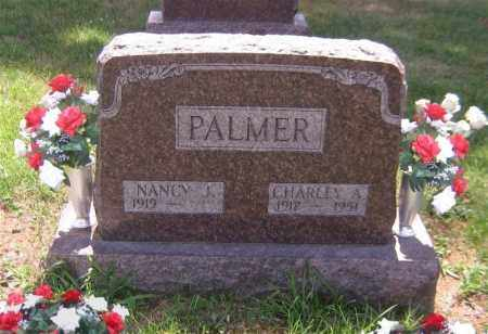 PALMER, NANCY JANE - Scioto County, Ohio | NANCY JANE PALMER - Ohio Gravestone Photos