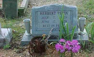 PENIX, HERBERT - Scioto County, Ohio | HERBERT PENIX - Ohio Gravestone Photos