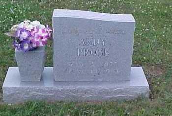 PROSE, ANDY - Scioto County, Ohio | ANDY PROSE - Ohio Gravestone Photos