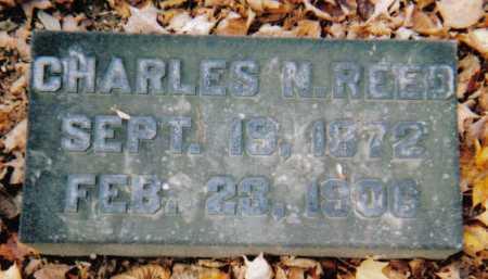 REED, CHARLES N. - Scioto County, Ohio | CHARLES N. REED - Ohio Gravestone Photos