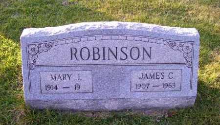 ROBINSON, JAMES C. - Scioto County, Ohio | JAMES C. ROBINSON - Ohio Gravestone Photos