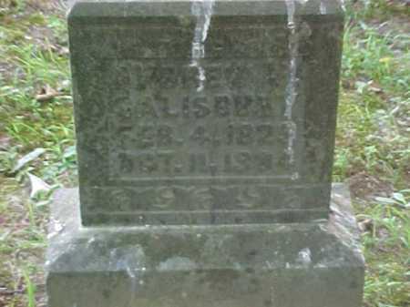 SALISBURY, BRET ? - Scioto County, Ohio   BRET ? SALISBURY - Ohio Gravestone Photos