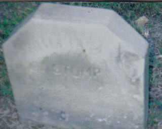 STUMP, WILFORD - Scioto County, Ohio | WILFORD STUMP - Ohio Gravestone Photos