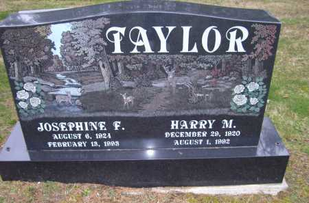 TAYLOR, JOSEPHINE F. - Scioto County, Ohio | JOSEPHINE F. TAYLOR - Ohio Gravestone Photos