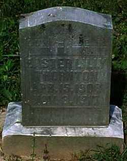THORNTON, EASTER LILLY - Scioto County, Ohio   EASTER LILLY THORNTON - Ohio Gravestone Photos