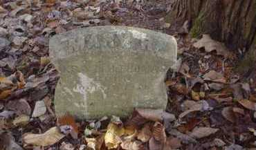 UNKNOWN, MARY R. - Scioto County, Ohio | MARY R. UNKNOWN - Ohio Gravestone Photos