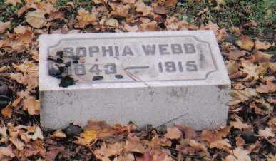 WEBB, SOPHIA - Scioto County, Ohio | SOPHIA WEBB - Ohio Gravestone Photos