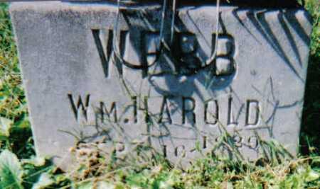WEBB, WM HAROLD - Scioto County, Ohio   WM HAROLD WEBB - Ohio Gravestone Photos