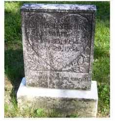 WHITE, MICHAEL STEPHEN - Scioto County, Ohio | MICHAEL STEPHEN WHITE - Ohio Gravestone Photos