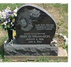 WILLIAMSON, PERRY D. - Scioto County, Ohio   PERRY D. WILLIAMSON - Ohio Gravestone Photos