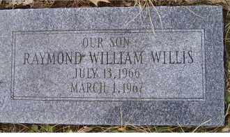 WILLIS, RAYMOND WILLIAM - Scioto County, Ohio | RAYMOND WILLIAM WILLIS - Ohio Gravestone Photos