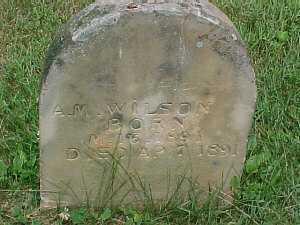 WILSON, A.M. - Scioto County, Ohio | A.M. WILSON - Ohio Gravestone Photos