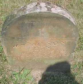 WILSON, W. M. - Scioto County, Ohio   W. M. WILSON - Ohio Gravestone Photos