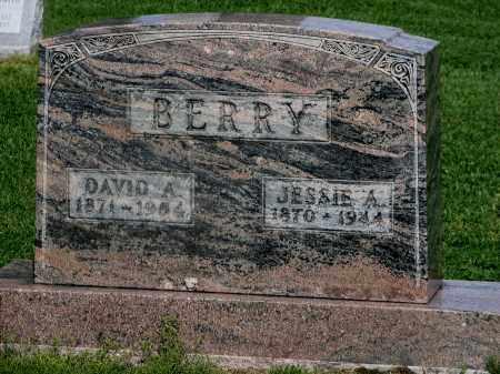 BERRY, DAVID ALONZO - Seneca County, Ohio | DAVID ALONZO BERRY - Ohio Gravestone Photos