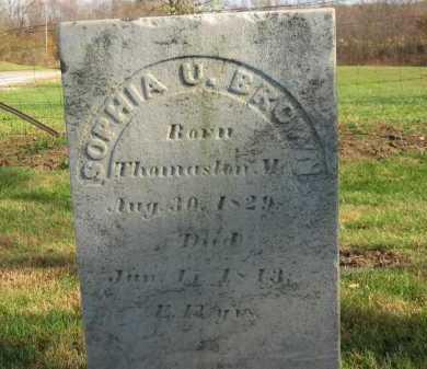 BROWN, SOPHIA U. - Seneca County, Ohio | SOPHIA U. BROWN - Ohio Gravestone Photos