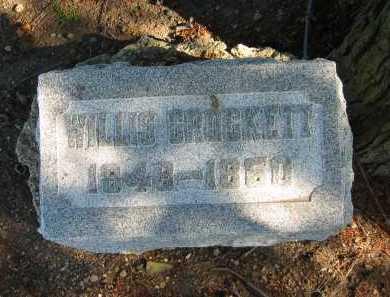 CROCKETT, WILLIS - Seneca County, Ohio   WILLIS CROCKETT - Ohio Gravestone Photos