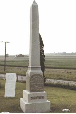 DROWN, FANNY - Seneca County, Ohio | FANNY DROWN - Ohio Gravestone Photos