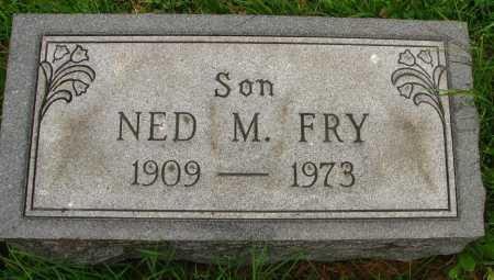 FRY, NED - Seneca County, Ohio | NED FRY - Ohio Gravestone Photos