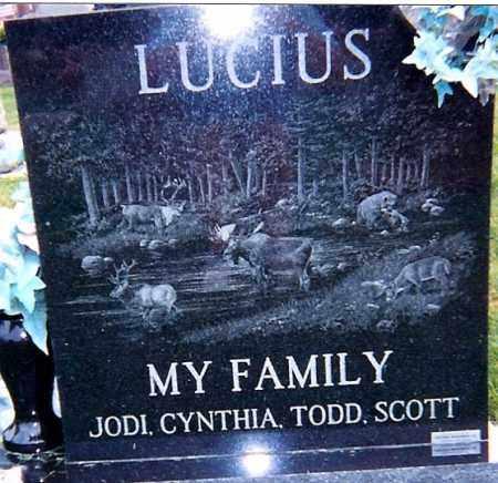 LUCIUS, JODI - Seneca County, Ohio | JODI LUCIUS - Ohio Gravestone Photos