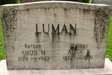 LUMAN, ALICE B. - Seneca County, Ohio | ALICE B. LUMAN - Ohio Gravestone Photos