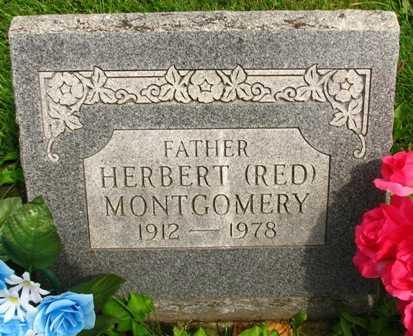 MONTGOMERY, HERBERT (RED) - Seneca County, Ohio | HERBERT (RED) MONTGOMERY - Ohio Gravestone Photos