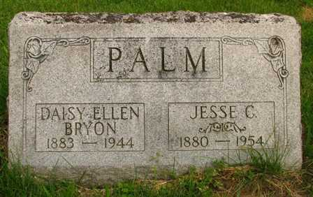 PALM, JESSE C. - Seneca County, Ohio | JESSE C. PALM - Ohio Gravestone Photos