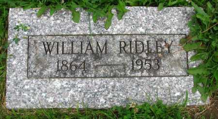 RIDLEY, WILLIAM - Seneca County, Ohio | WILLIAM RIDLEY - Ohio Gravestone Photos