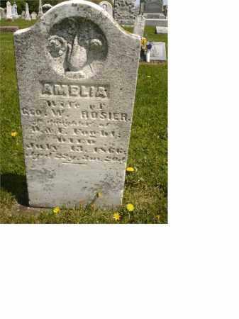 ROSIER, AMELIA - Seneca County, Ohio | AMELIA ROSIER - Ohio Gravestone Photos