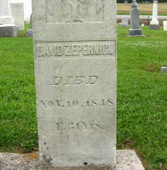 ZEPERNICK, DAVID - Seneca County, Ohio | DAVID ZEPERNICK - Ohio Gravestone Photos