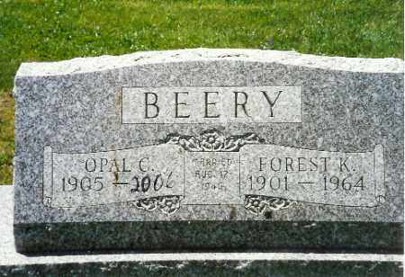 BEERY, FOREST K. - Shelby County, Ohio   FOREST K. BEERY - Ohio Gravestone Photos