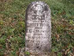 BROWN, ETNA - Shelby County, Ohio | ETNA BROWN - Ohio Gravestone Photos