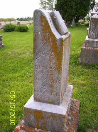 BURRESS, JACOB S. - Shelby County, Ohio | JACOB S. BURRESS - Ohio Gravestone Photos