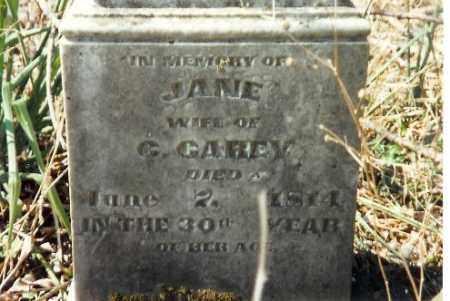 CAREY, JANE - Shelby County, Ohio | JANE CAREY - Ohio Gravestone Photos