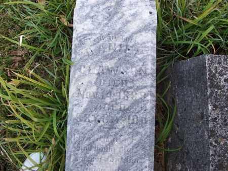 CLAWSON, DANIEL - Shelby County, Ohio   DANIEL CLAWSON - Ohio Gravestone Photos