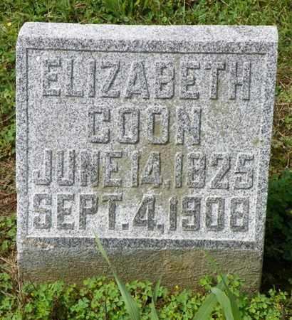 COON, ELIZABETH - Shelby County, Ohio | ELIZABETH COON - Ohio Gravestone Photos