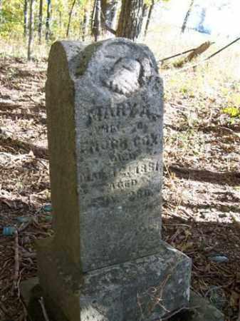 COX, MARY - Shelby County, Ohio | MARY COX - Ohio Gravestone Photos