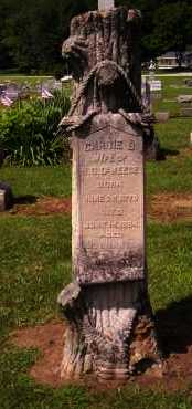 DEWEESE, CARRIE B. - Shelby County, Ohio | CARRIE B. DEWEESE - Ohio Gravestone Photos