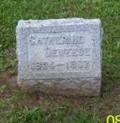DEWEESE, CATHERINE - Shelby County, Ohio | CATHERINE DEWEESE - Ohio Gravestone Photos
