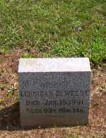 DEWEESE, LEONIDAS - Shelby County, Ohio   LEONIDAS DEWEESE - Ohio Gravestone Photos