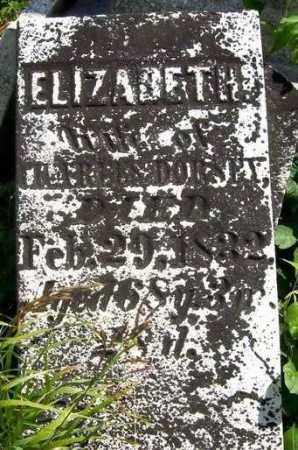 DORSEY, ELIZABETH - Shelby County, Ohio   ELIZABETH DORSEY - Ohio Gravestone Photos