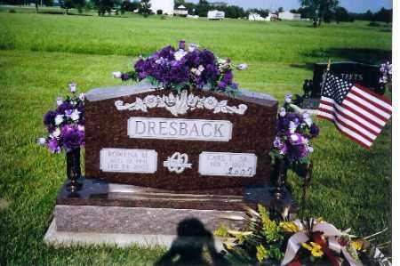 STRAYER DRESBACK, ROWENA - Shelby County, Ohio | ROWENA STRAYER DRESBACK - Ohio Gravestone Photos