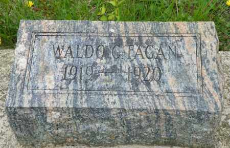 FAGAN, WALDO C. - Shelby County, Ohio | WALDO C. FAGAN - Ohio Gravestone Photos